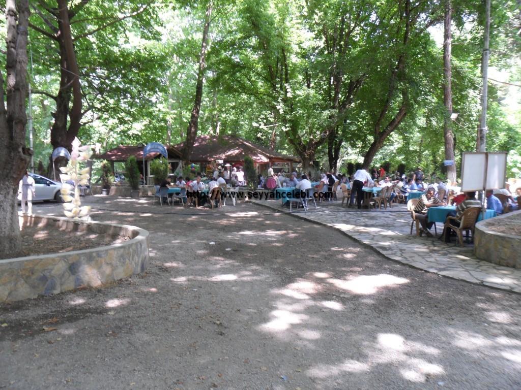 Cerrah Giris Çay Bahçesi
