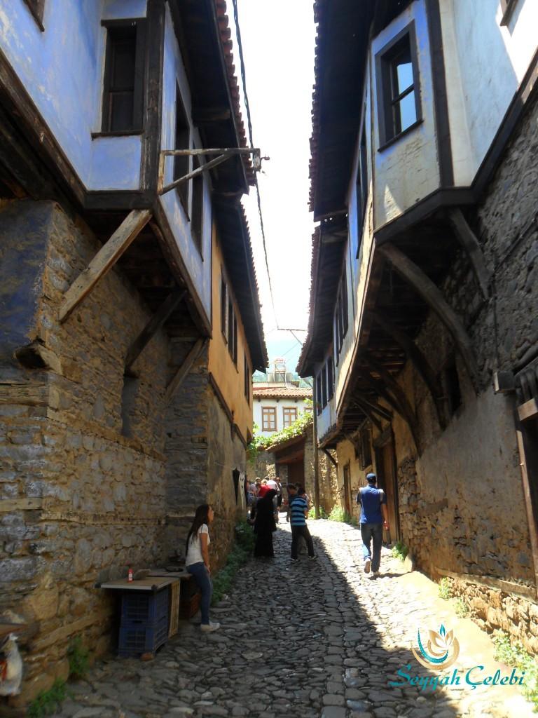 Tarihi Cumalıkızık Köyü Evleri