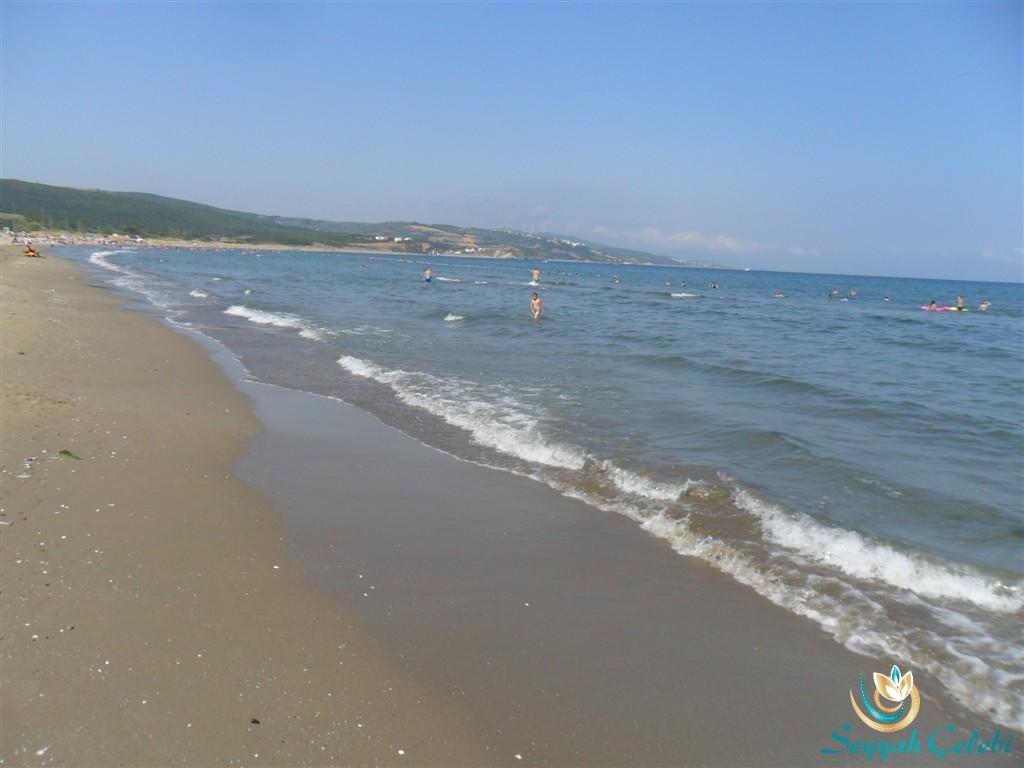 Eşkel Deniz Temiz