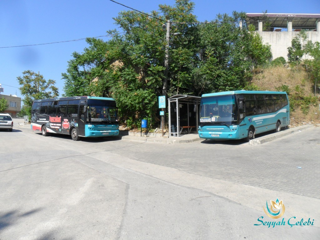 Misi Köyü Belediye Otobüsü ile Ulaşım