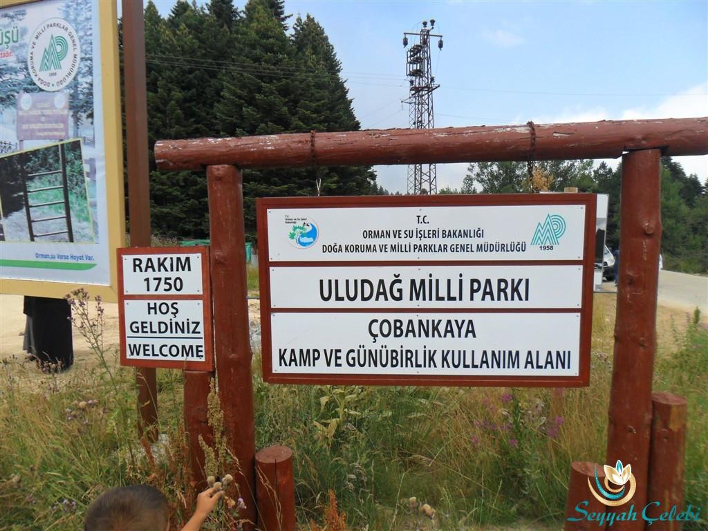 Uludağ Çobankaya Kamp ve Günübirlik Kamp Alanı