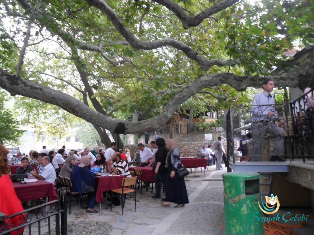 İnkaya Çınarı Kahvaltı ve Çay Bahçesi