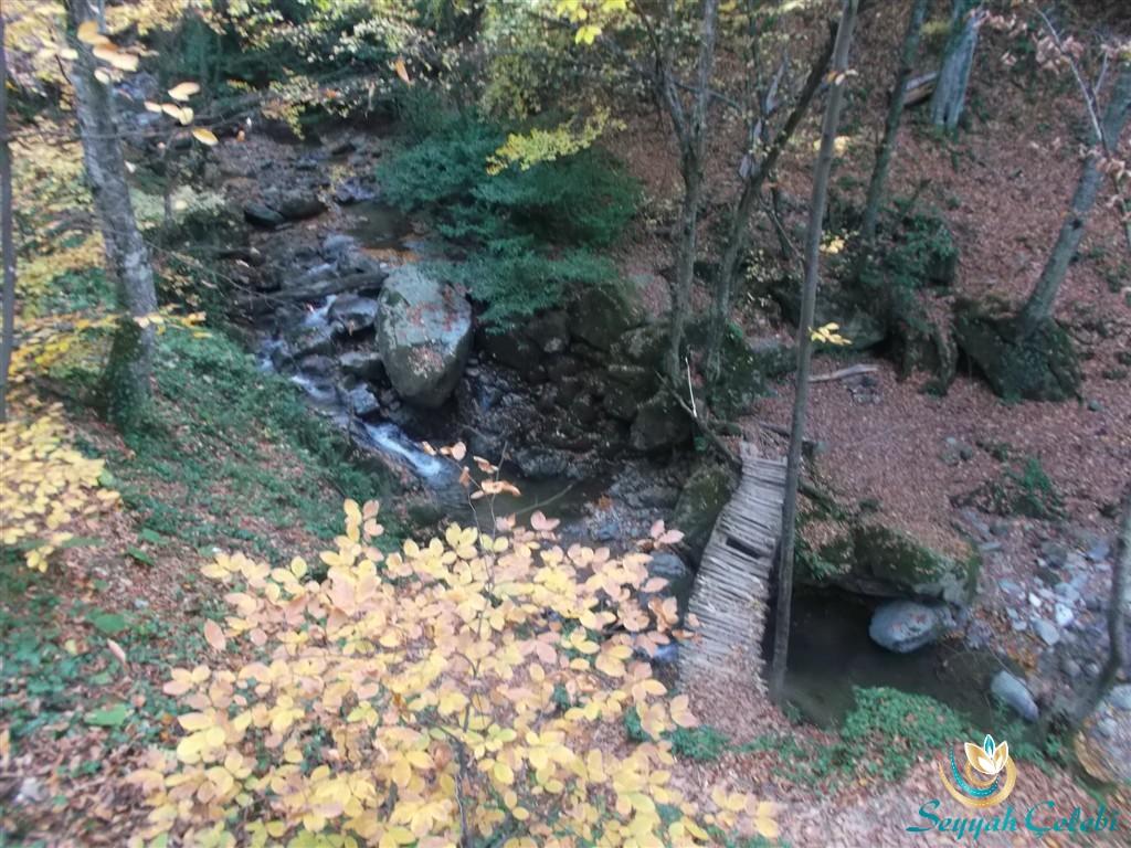 Oylat Deresi Köprü