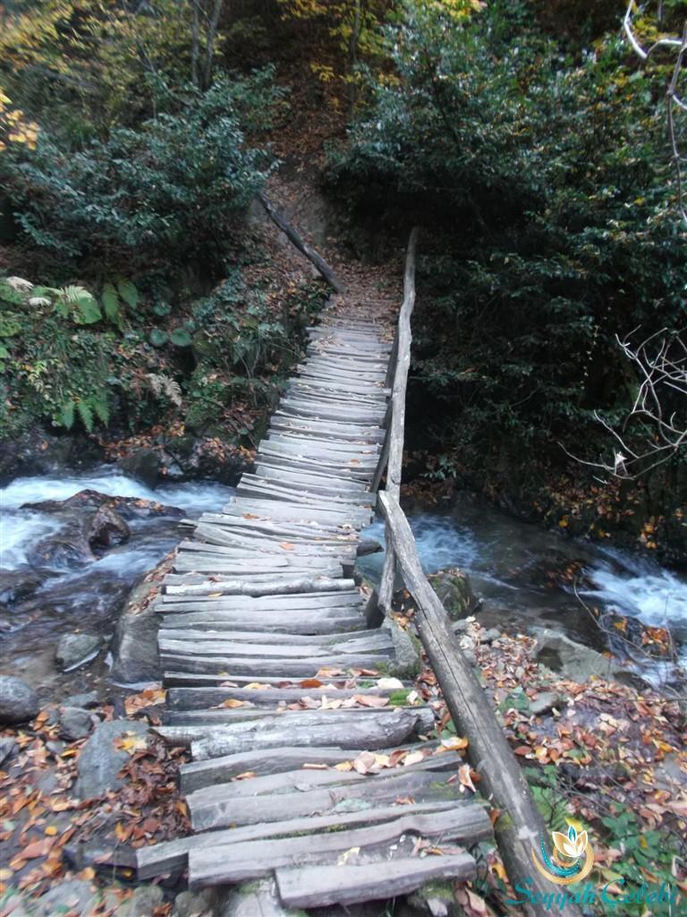 Oylat Deresi Köprüleri