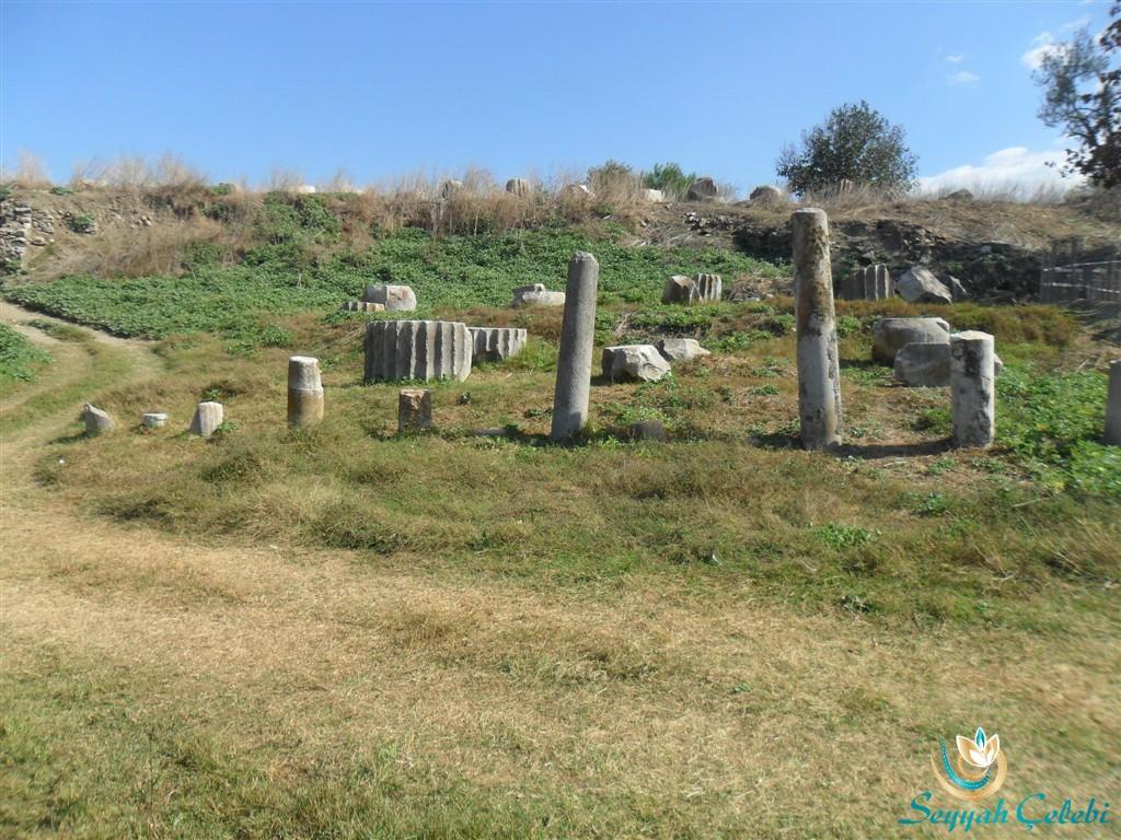 Artemis Tapınağı Sütun Kalıntıları