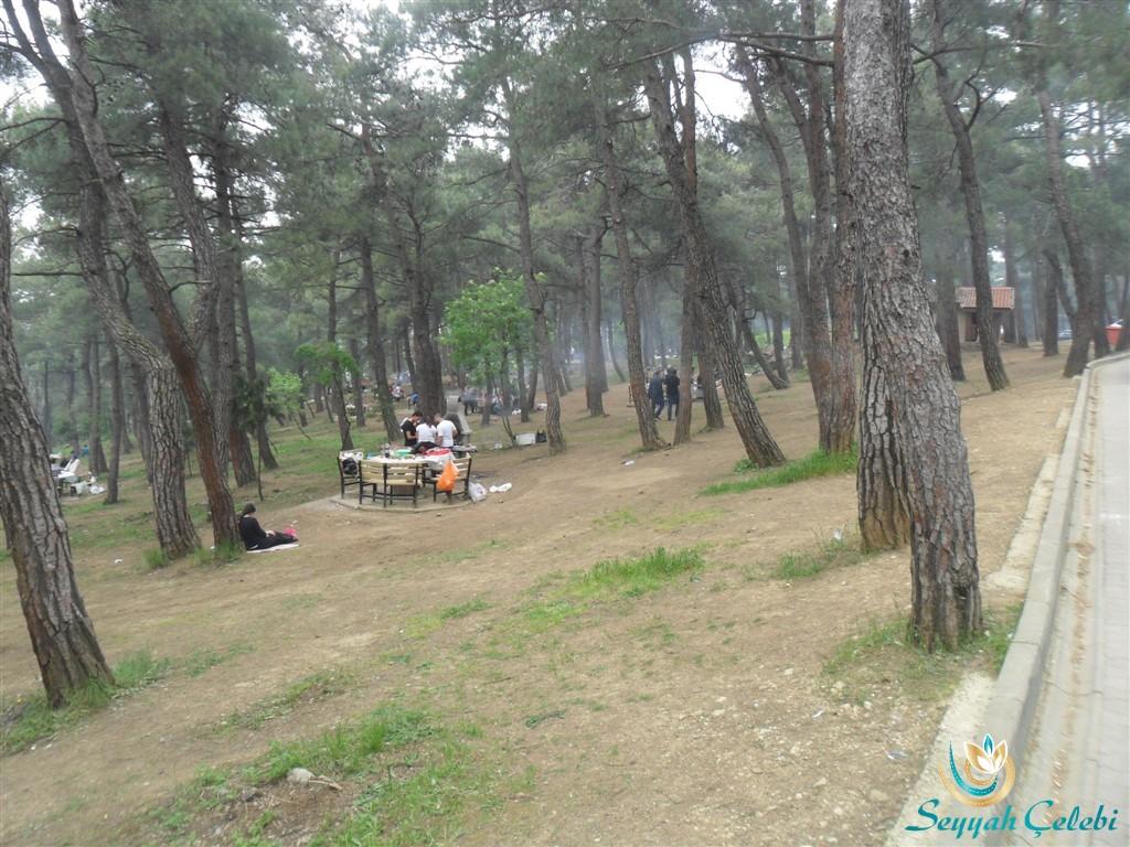 Bursa Atatürk Kent Ormanı Piknik Masaları