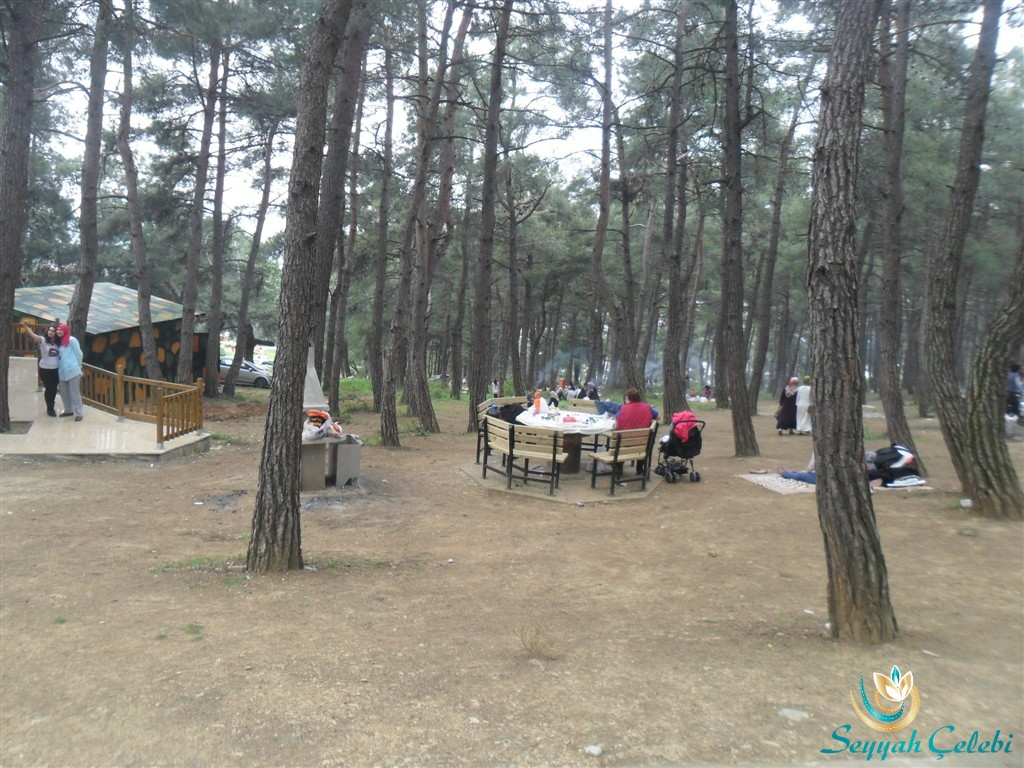 Bursa Kent Ormanı Piknik