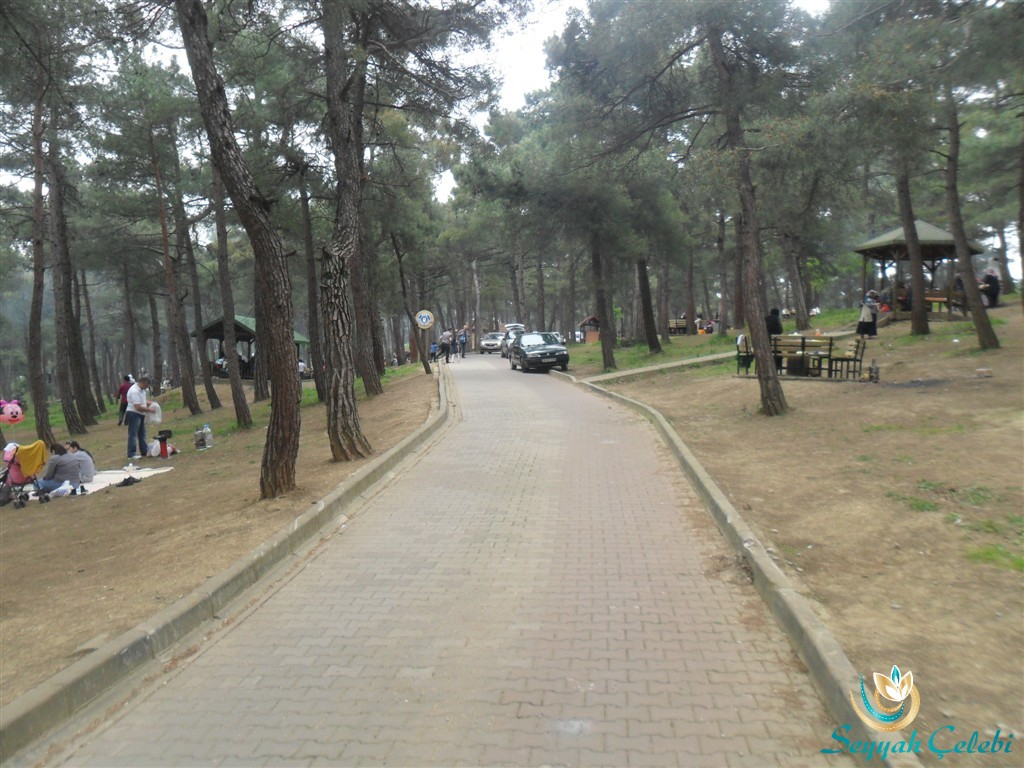 Bursa Kent Ormanı