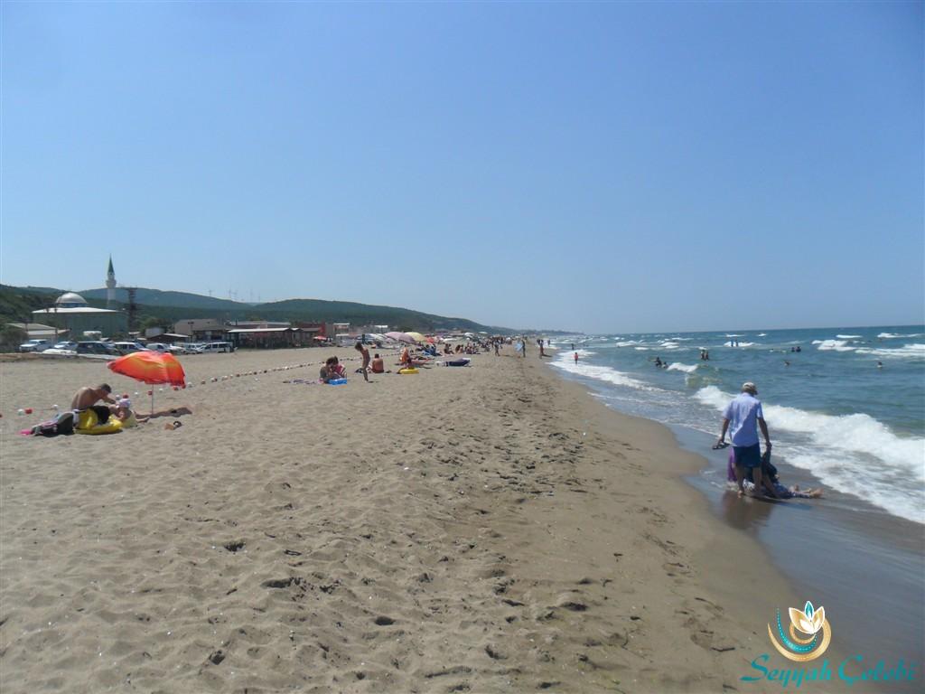 Eğerce Plajı Misafirleri