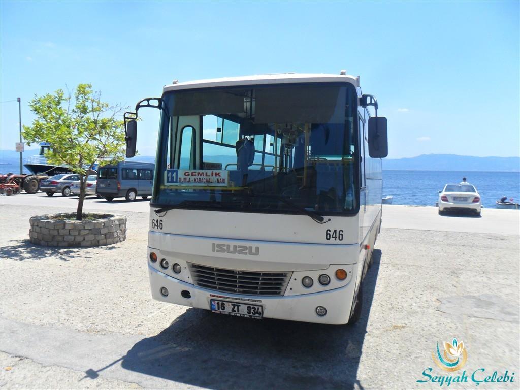 Gemlik Narlı Otobüs
