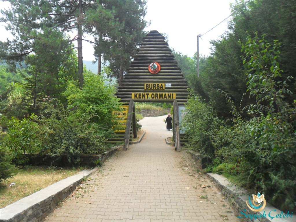 Hamamlıkızık Bursa Kent Ormanı