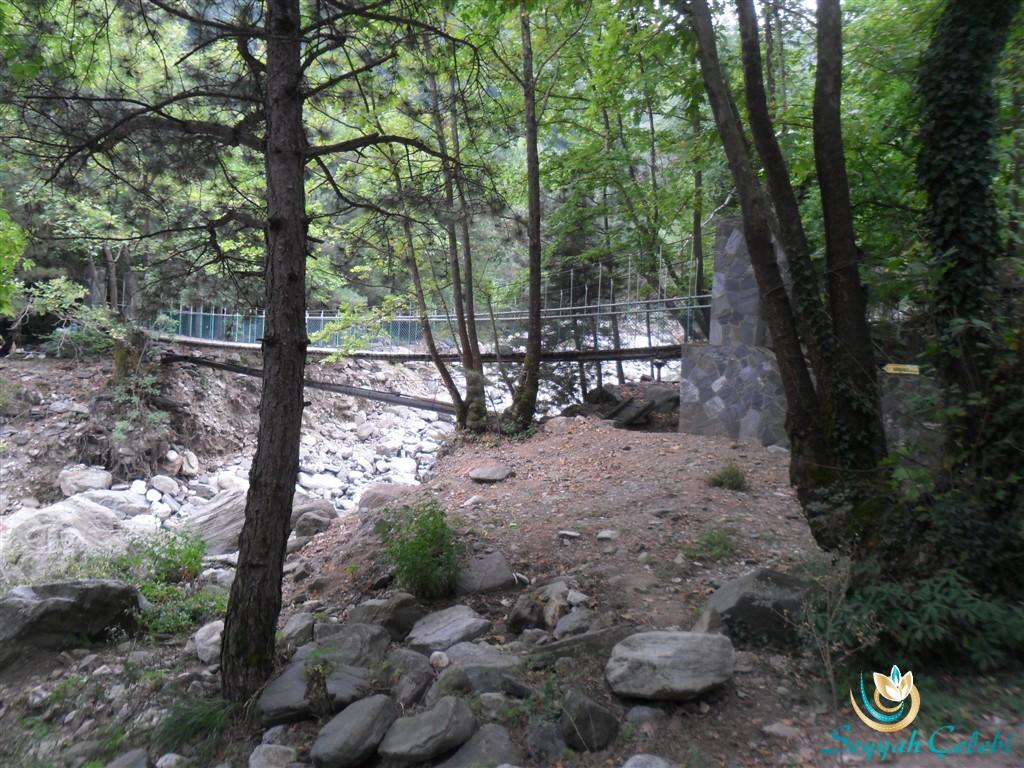 Hamamlıkızık Kent Ormanı Asma Köprü