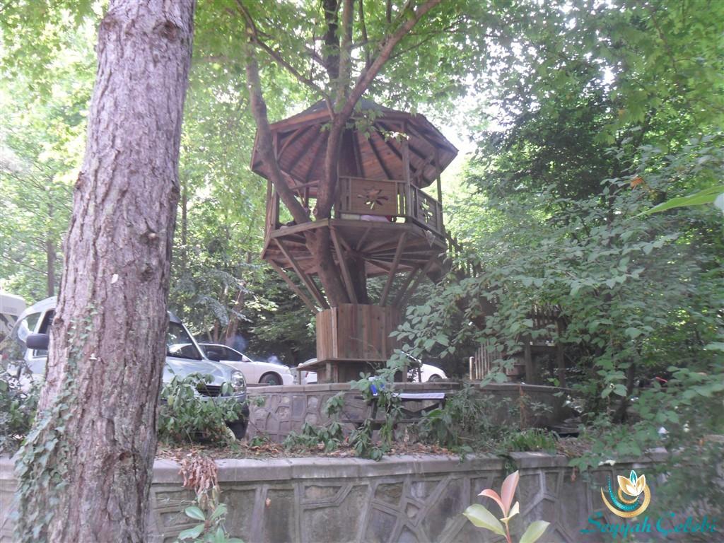 Kent Ormanı Ağaç Ev Piknik Yeri