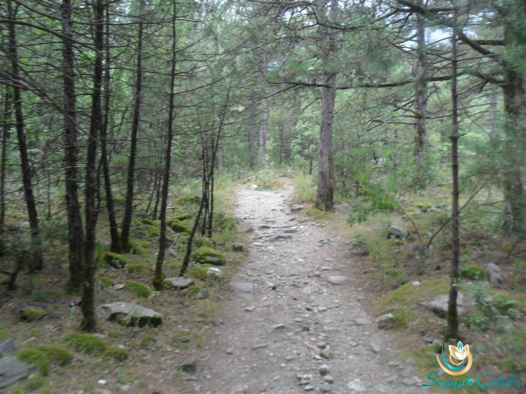 Kürekli Şelalesi Yürüyüş Yolu