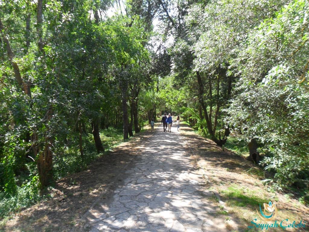 Kuşcenneti Milli Parkı Yolları