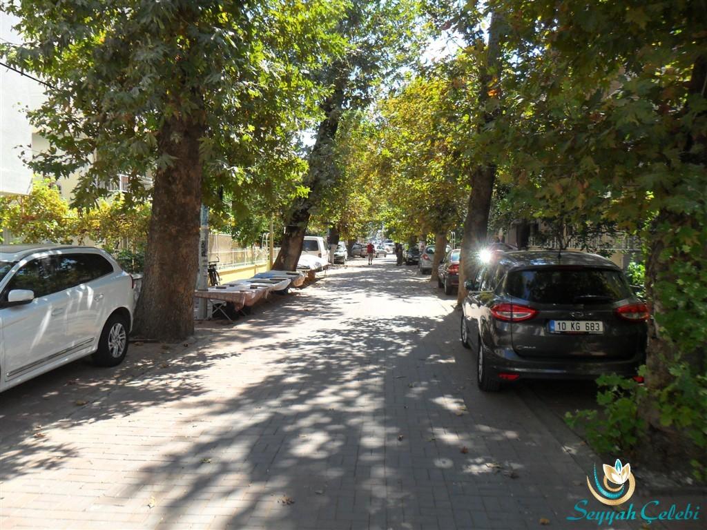 Akçay Ağaçlı Yollar